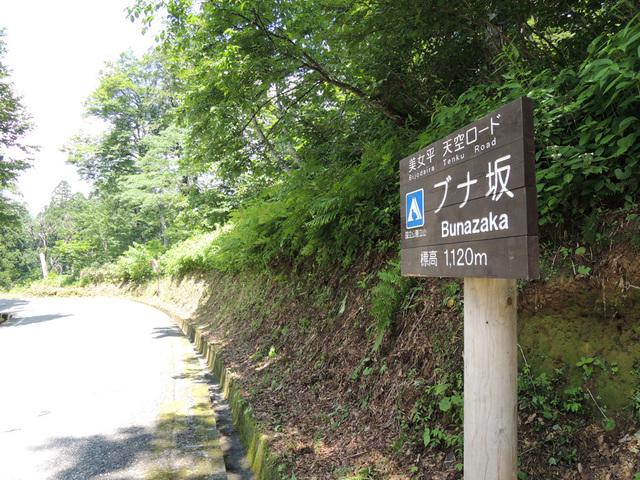DSCN2708.jpg